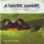 A Natural Wonder - Pond Life